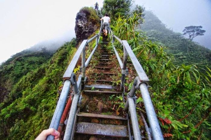 Haiku Stairs in Hawaii (6)