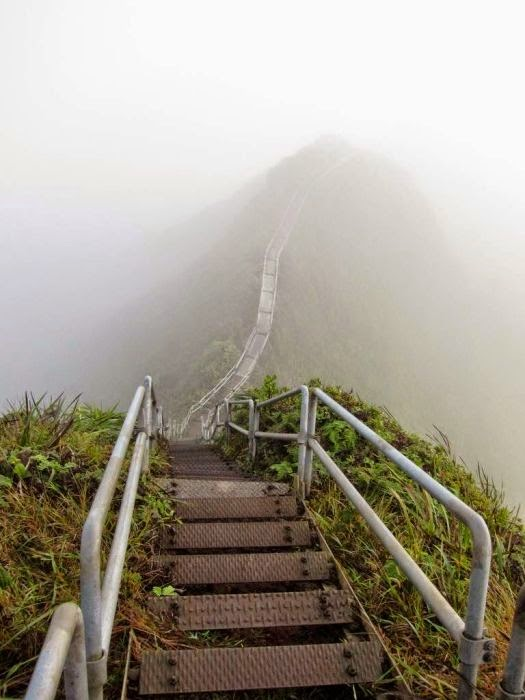 Haiku Stairs in Hawaii (2)