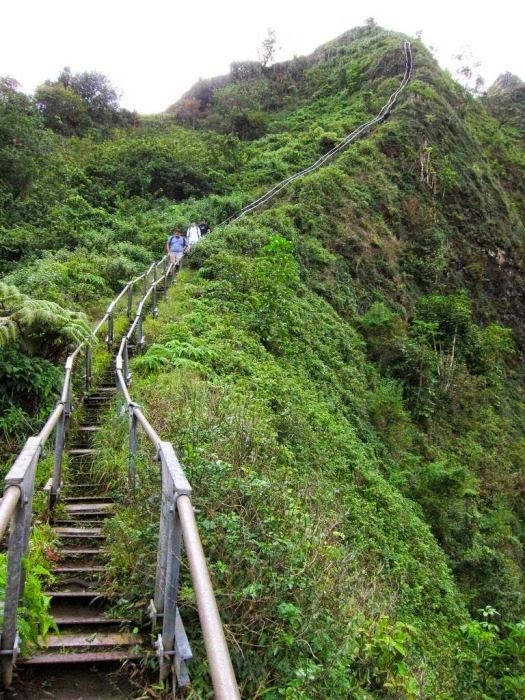 Haiku Stairs in Hawaii (3)